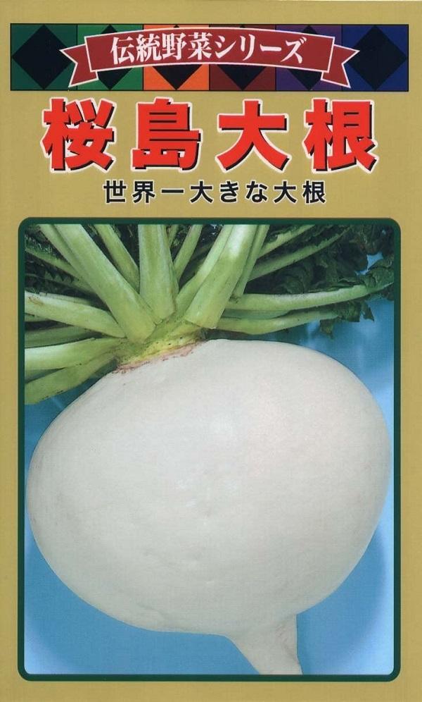 世界一大きな大根 種子 伝統野菜シリーズ桜島大根トーホクのタネ 国内送料無料 新着セール