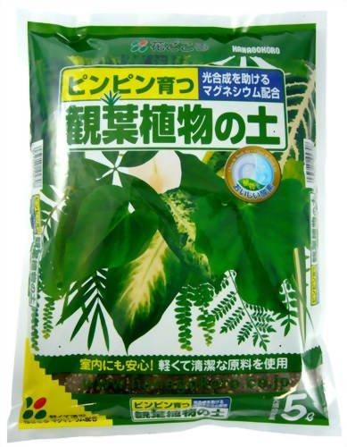 室内でも安心 格安 価格でご提供いたします 軽くて清潔な原料を使用 用土 売店 5L 花ごころ観葉植物の土