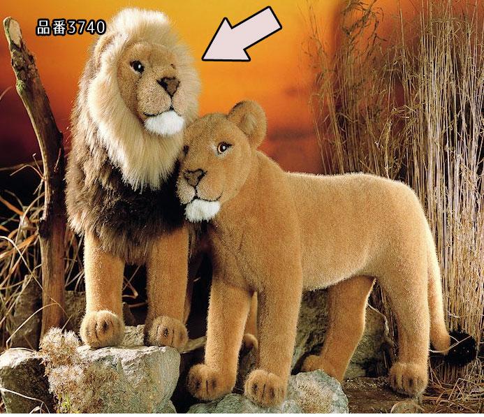 """おすライオン'98 KOSEN(ケーセン社) 48cm """"Talek"""" Lion/ぬいぐるみ プレゼント/リアル/動物/ギフト/子供/女の子/男の子/大人"""