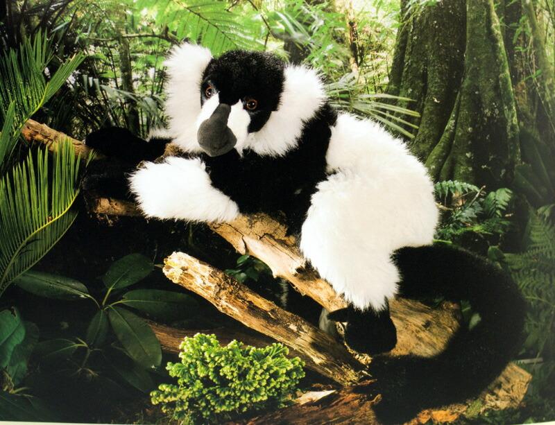 ケーセン ぬいぐるみ kosen キツネザル Lemur 52cm リアル 動物