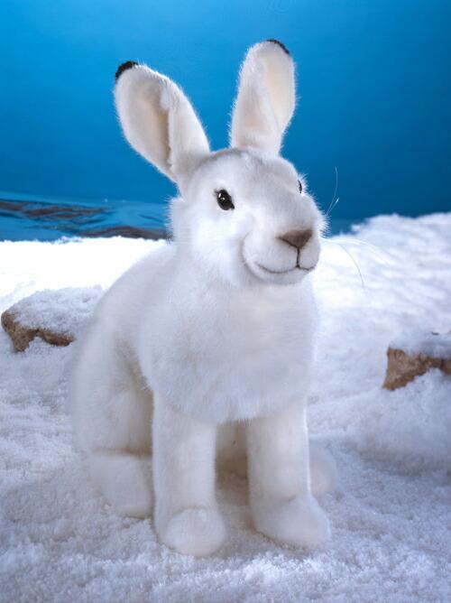 """ユキウサギ KOSEN(ケーセン社) 39cm """"Timmi"""" Snow Hare/ぬいぐるみ プレゼント/リアル/動物/ギフト/子供/女の子/男の子/大人/クリスマス"""