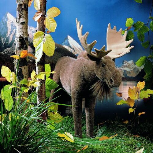 ムース(ヘラジカ) KOSEN(ケーセン社) 44cm Moose/ぬいぐるみ プレゼント/リアル/動物/ギフト/子供/女の子/男の子/大人/クリスマス