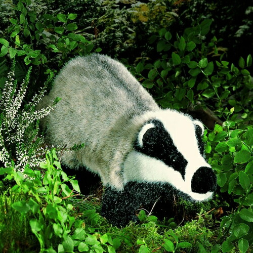あなぐま KOSEN(ケーセン社) 47cm Badger/ぬいぐるみ プレゼント/リアル/動物/ギフト/子供/女の子/男の子/大人