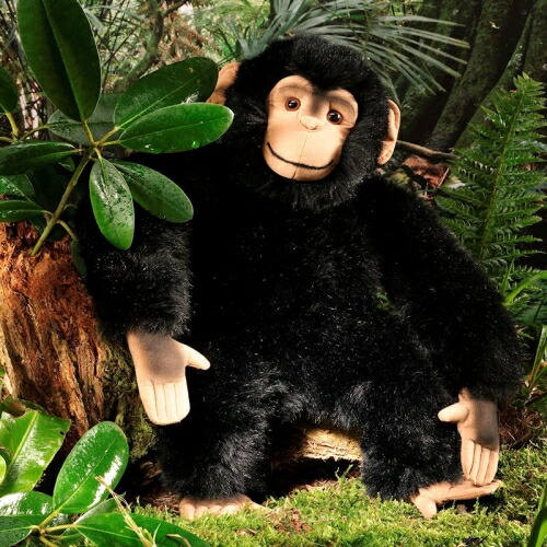チンパンジー KOSEN(ケーセン社) 40cm Chimpanzee/ぬいぐるみ プレゼント/リアル/動物/ギフト/子供/女の子/男の子/大人