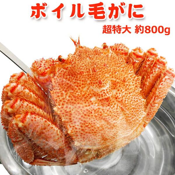 サーモン専門店岩松 ボイル毛がに 超特大 約800g 1杯 送料無料