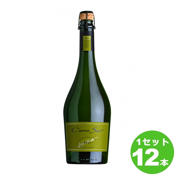 スマイル コノスル スパークリングワイン ブリュット Cono Sur Sparkling Wine Brut定番 スパークリング 750ml ×12本 チリ/ビオビオヴァレー ワイン【送料無料※一部地域は除く】【取り寄せ品 メーカー在庫次第となります】