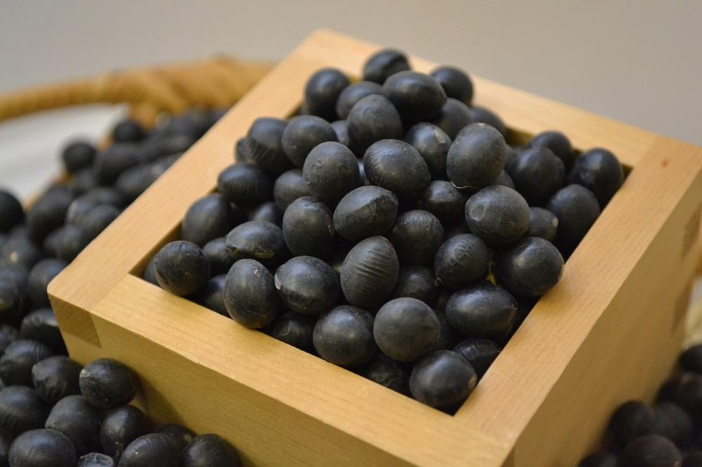 新物できました!【黒大豆】豆の名産地「北海道十勝」豊頃町産 黒大豆30kg(光黒)R1年産