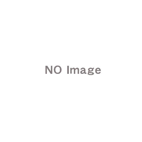 ★受注生産品★【アイホン】集合玄関機用パネル、シルバー [VHW-2736P-S]