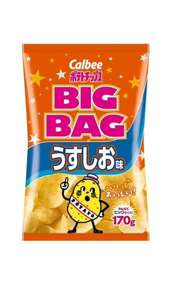 年間定番 カルビー 株 ポテトチップス 激安 激安特価 送料無料 BIGBAGうすしお味 イージャパンモール 170g ×12個