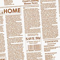 格安人気 PG903V ワイド2P カカオ (30個) ワイド2P PG903V【イージャパンモール カカオ】, Erinbella:dd21b947 --- canoncity.azurewebsites.net