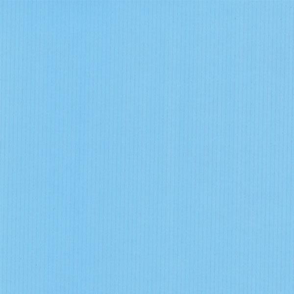 【キャッシュレス5%還元】ホーソーシ コート シロスジムジB (500枚)【イージャパンモール】