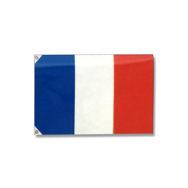 051003002 万国旗フランス (100枚)【イージャパンモール】