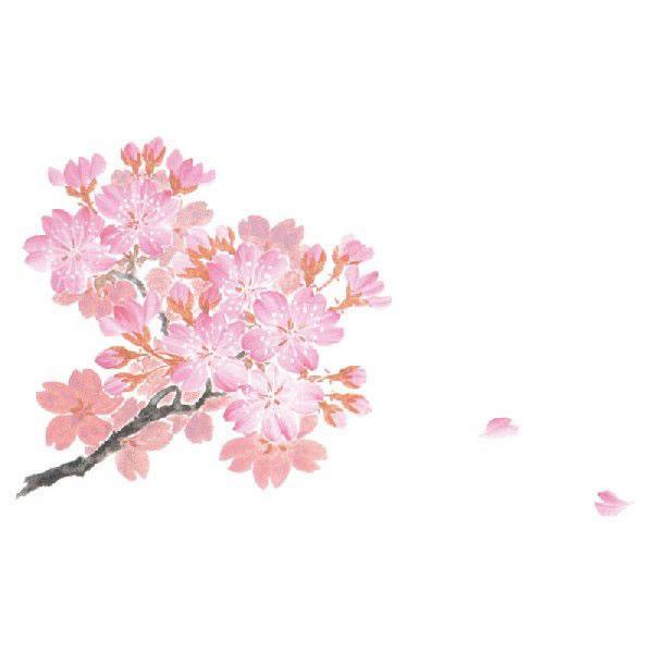 輝コースター 3 桜 (2000枚)【イージャパンモール】