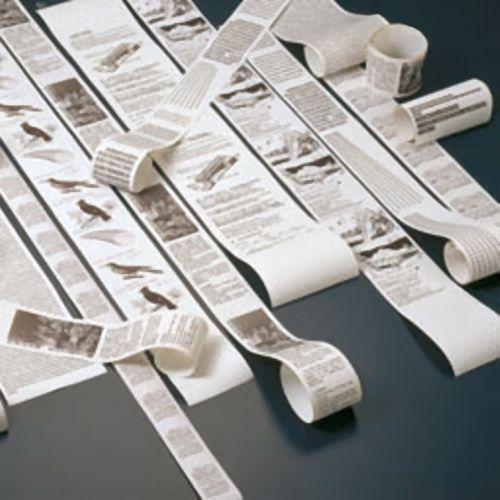 【キャッシュレス5%還元】【送料無料】【法人(会社・企業)様限定】沖データ サーマルロール紙 幅80mm 1箱(12巻)