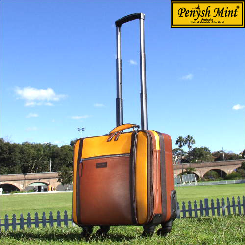 Penysh Mint ペニシュミント World One EX ワールド ワン EX キャリーバッグ AM14011