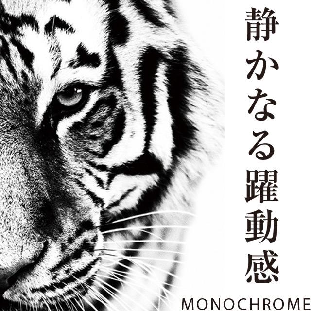 【アートパネル】アニマル モノトーン Monochrome【送料込み ライオン トラ ヒョウ 豹 象 オオカミ キリン リアル かわいい 可愛い メッセージ アニマル】