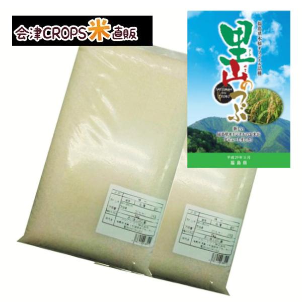 わけあり 商い 希少品種 福島県産里山のつぶ 5kg 白米 通常発送 7月精米 送料無料 令和二年産 高級