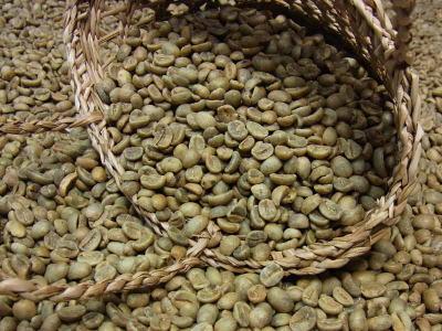 生豆コーヒーニカラグアSHG (10kg入):【HLS_DU】
