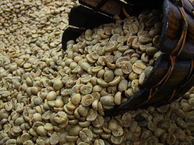 生豆コーヒーホンジュラスHG(10kg入) :【HLS_DU】