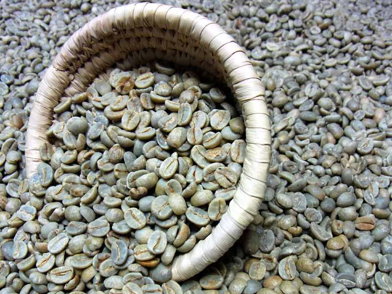 生豆コーヒーブラジル・サントスNO2 (10kg入):【HLS_DU】