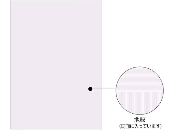 ヒサゴ/コピー偽造予防用紙浮き文字A4両面1000枚/BP2110Z
