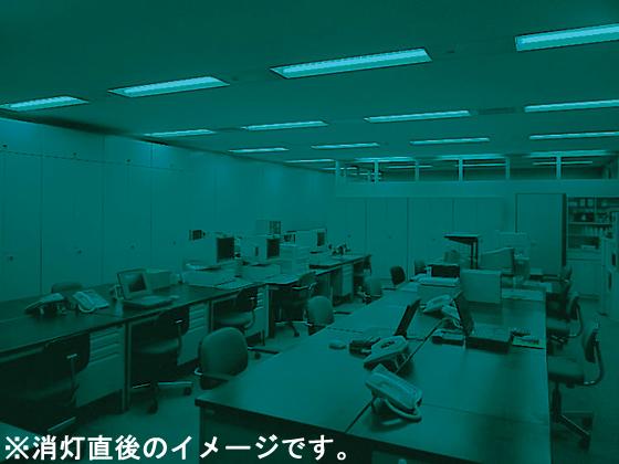 NEC/直管ラピッドスタート10本/FLR40SEX-D/M-SHG.10
