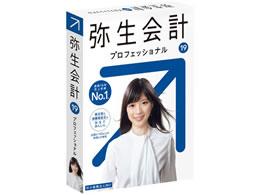 弥生/弥生会計19 プロフェッショナル