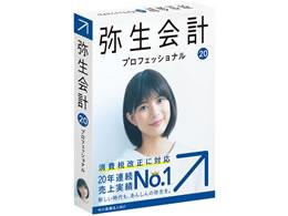 弥生/弥生会計20プロ通常版 消費税改正対応/YRAN0001