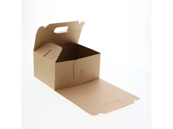 シモジマ/ネオクラフト キャリーBOX L 20枚×10袋