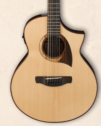 Ibanez AEG AEG10II Natural High Gloss(NT) <アイバニーズ アコースティックギター>【商品番号 10010606 】【店頭受取対応商品】