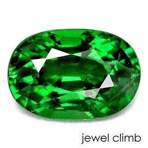 【加工にお勧め価格変更中】グリーン ガーネット 宝石 ルース 0.82CT