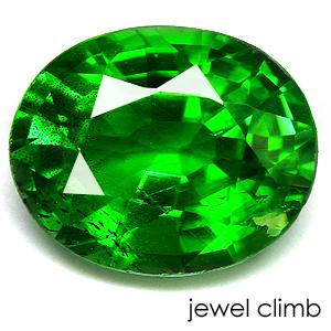 鮮やかなグリーンの彩り 売り出し グリーン ガーネット 宝石 実物 ルース 0.82CT