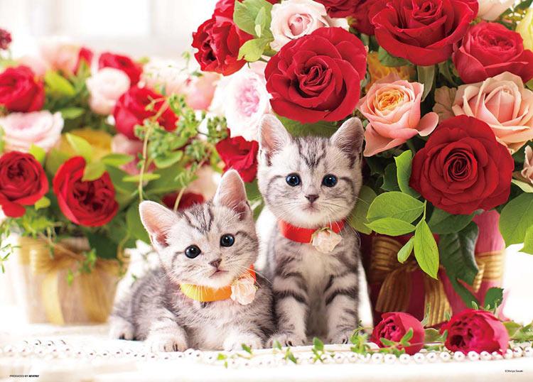 BEV-P66-115 ペット 動物 新作からSALEアイテム等お得な商品 満載 子猫とローズタイム 送料無料お手入れ要らず 600ピース ジグソーパズル 誕生日 ギフト Puzzle パズル プレゼント 誕生日プレゼント