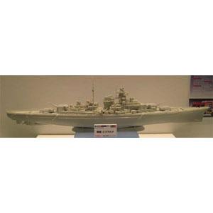 1/350 戦艦ビスマルク ドイツレベル
