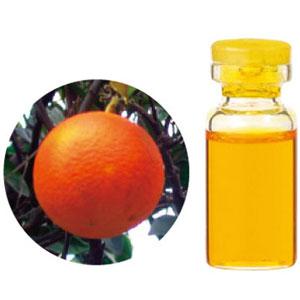 08-436-3060 生活の木 エッセンシャルオイル オレンジスイート 1000ml(業務用サイズ)