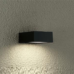 DWP-37173 ダイコー LEDポーチライト【電気工事専用】 DAIKO [DWP37173]