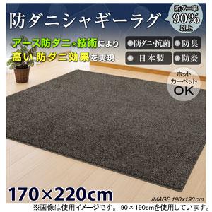 H85K151100119 日本ベターリビング H85K151100119 防ダニシャギーラグ 170×220cm(ブラウン), オートパーツエージェンシー:75f953e7 --- rakuten-apps.jp