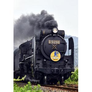 [鉄道模型]カトー (Nゲージ) 2016-8 D51 200 蒸気機関車