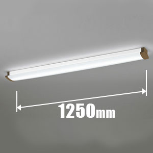 OL291031P2B オーデリック LEDベースライト【電気工事専用】 ODELIC [OL291031P2B]