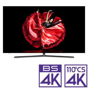 (標準設置料込_Aエリアのみ)55E8000 ハイセンス 55V型 有機ELパネル 地上・BS・110度CSデジタル4Kチューナー内蔵テレビ (別売USB HDD録画対応) Hisense