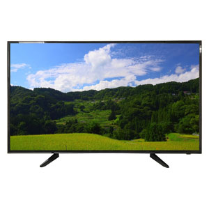 (標準設置料込_Aエリアのみ)AS-03F5001TV WIS 50V型地上・BS・110度CSデジタルフルハイビジョンLED液晶テレビ (別売USB HDD録画対応)