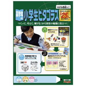 日本製 高学年の小学生ピタゴラス ピープル 激安特価品