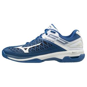 61GA207027250 ミズノ テニスシューズ(ブルー×ホワイト×シルバー・25.0cm) mizuno ウエーブエクシード ツアー4 AC ユニセックス