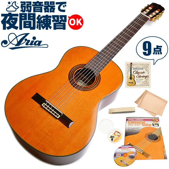 クラシックギター 初心者 セット アリア A-20 (シダー材 単板) Aria アコースティック (9点 入門 セット)