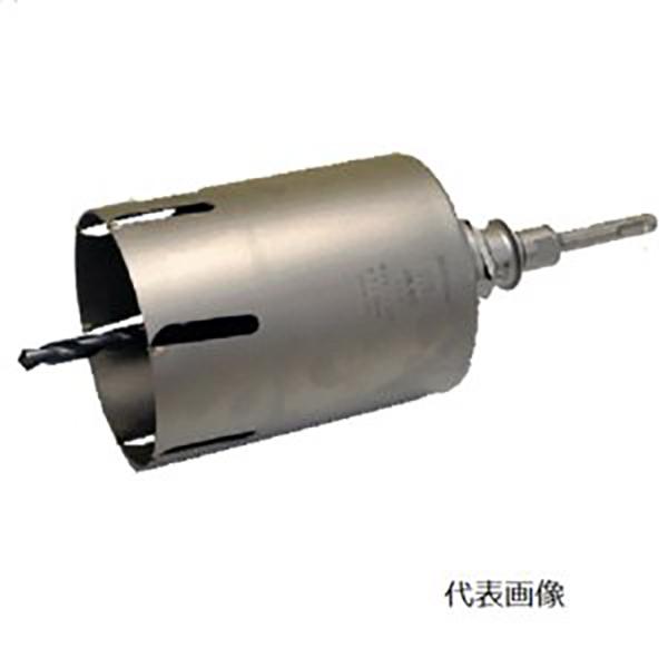 【送料無料】BOSCH・ボッシュ 2X4コア110mmSDSセット P24-110SDS