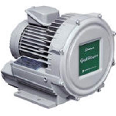 【送料無料】 昭和電機電動送風機 渦流式高圧シリーズ ガストブロアシリーズ 0.2kWU2V20T【2387379】