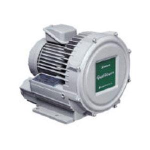 【送料無料】 昭和電機電動送風機 渦流式高圧シリーズ ガストブロアシリーズ 0.3kWU2V30T【2387395】