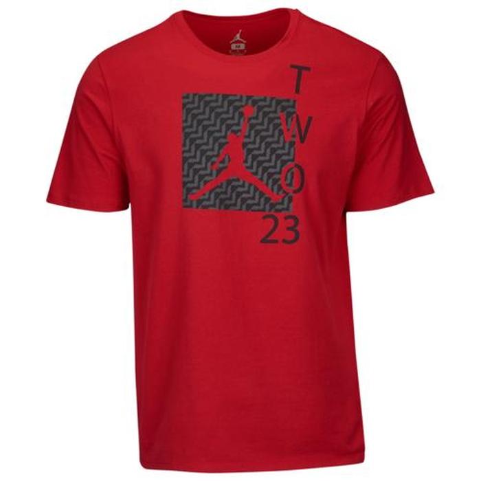 【海外限定】ジョーダン レトロ シャツ men's メンズ jordan retro 12 two 23 t mens