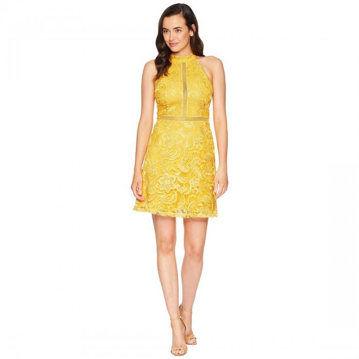 ALEXIA ADMOR ドレス レディースファッション ワンピース レディース 【 Mock Neck Fit And Flare Lace Dress 】 Gold
