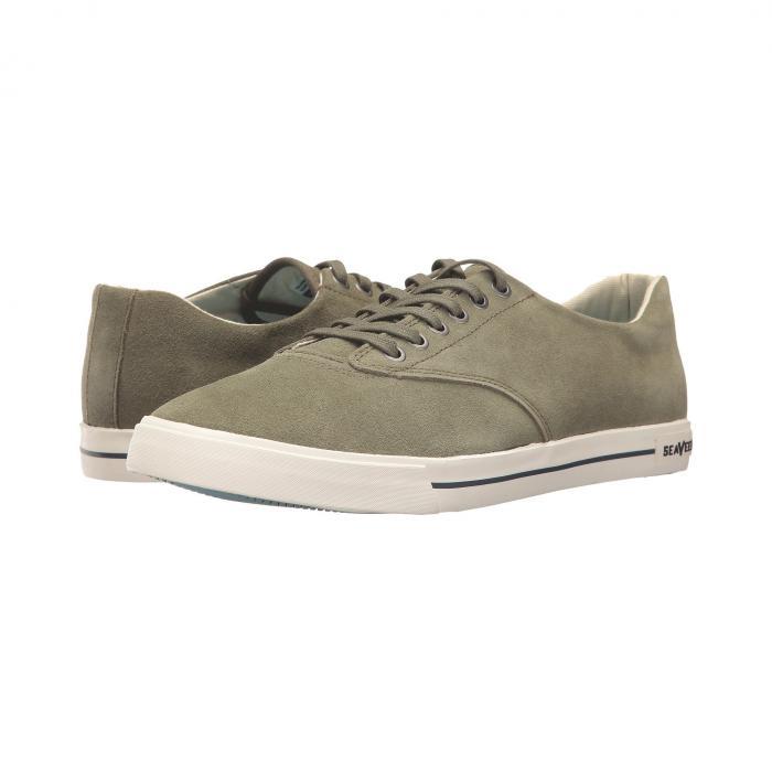 【海外限定】スニーカー 靴 【 HERMOSA PLIMSOLL VARSITY 】